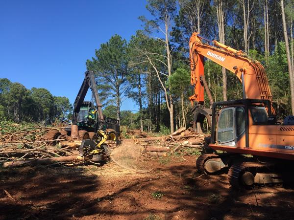 machinery used for land clearing